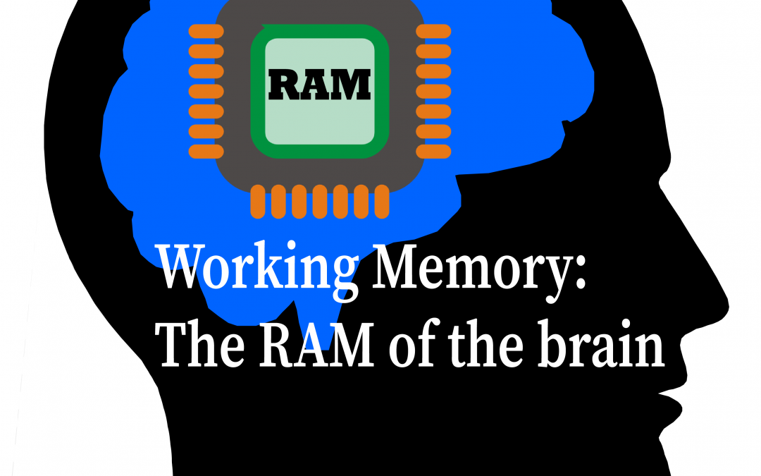 Working Memory: The RAM of the brain
